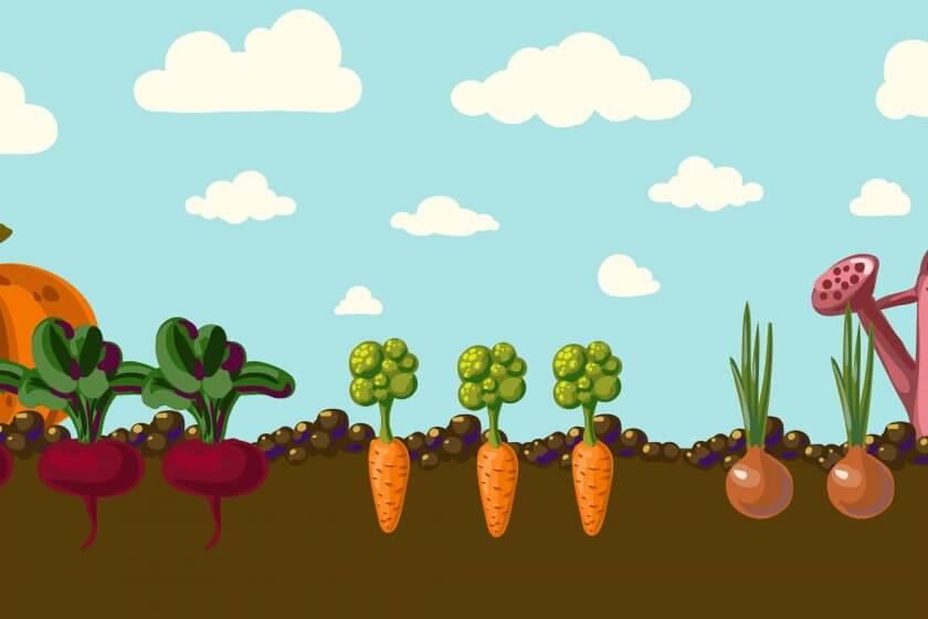 Vintage garden banner with root veggies vector illustration