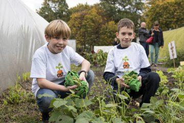 zwei Jungen am Acker mit Gemüse